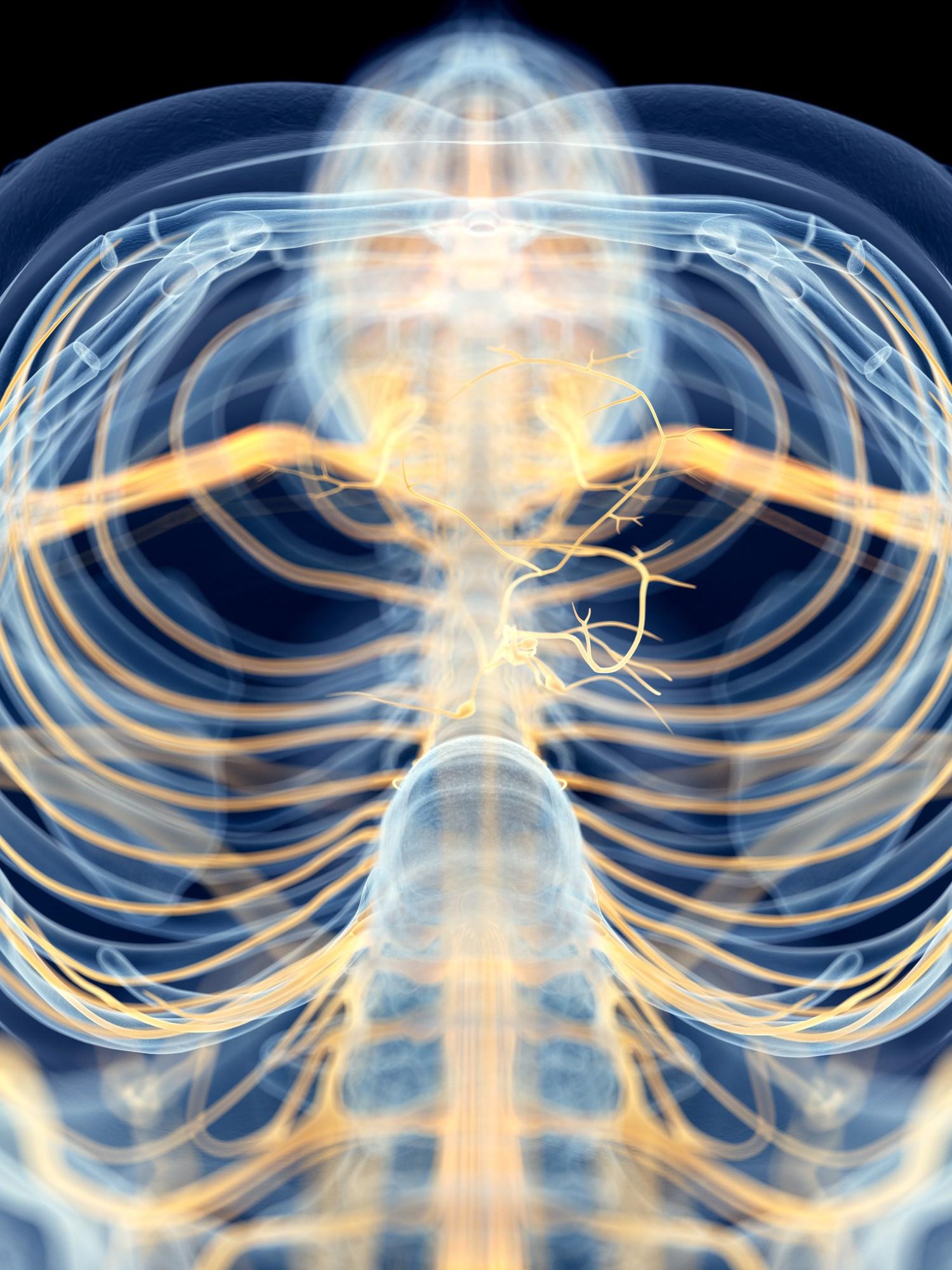 Neurostimulation to Target the Inflammatory Reflex in Rheumatoid Arthritis