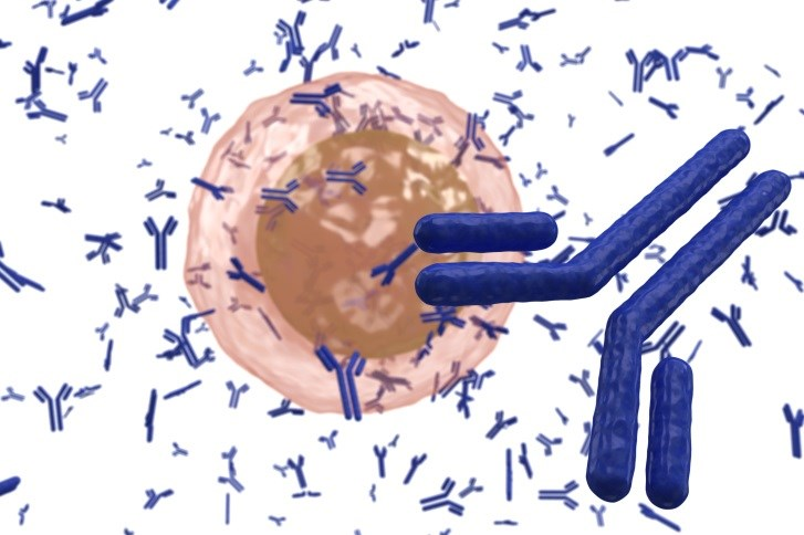 Investigators find that individual antibody profiles to A(H1N1) viruses revealed three priming patterns.
