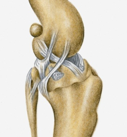 No Functional Improvement in Knee OA With Spironolactone