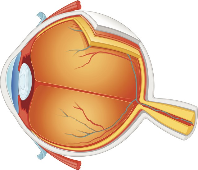Adalimumab Gains FDA Approval for Noninfectious Uveitis