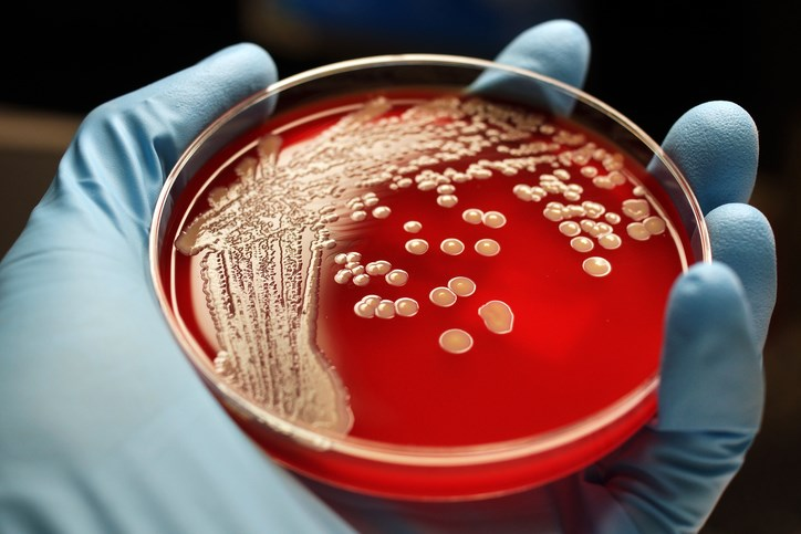 Antibiotic Resistance Problem Brought Before Congress