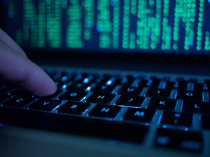 Like pathogens and cancer cells, the danger of malware lies in persistence and spread.