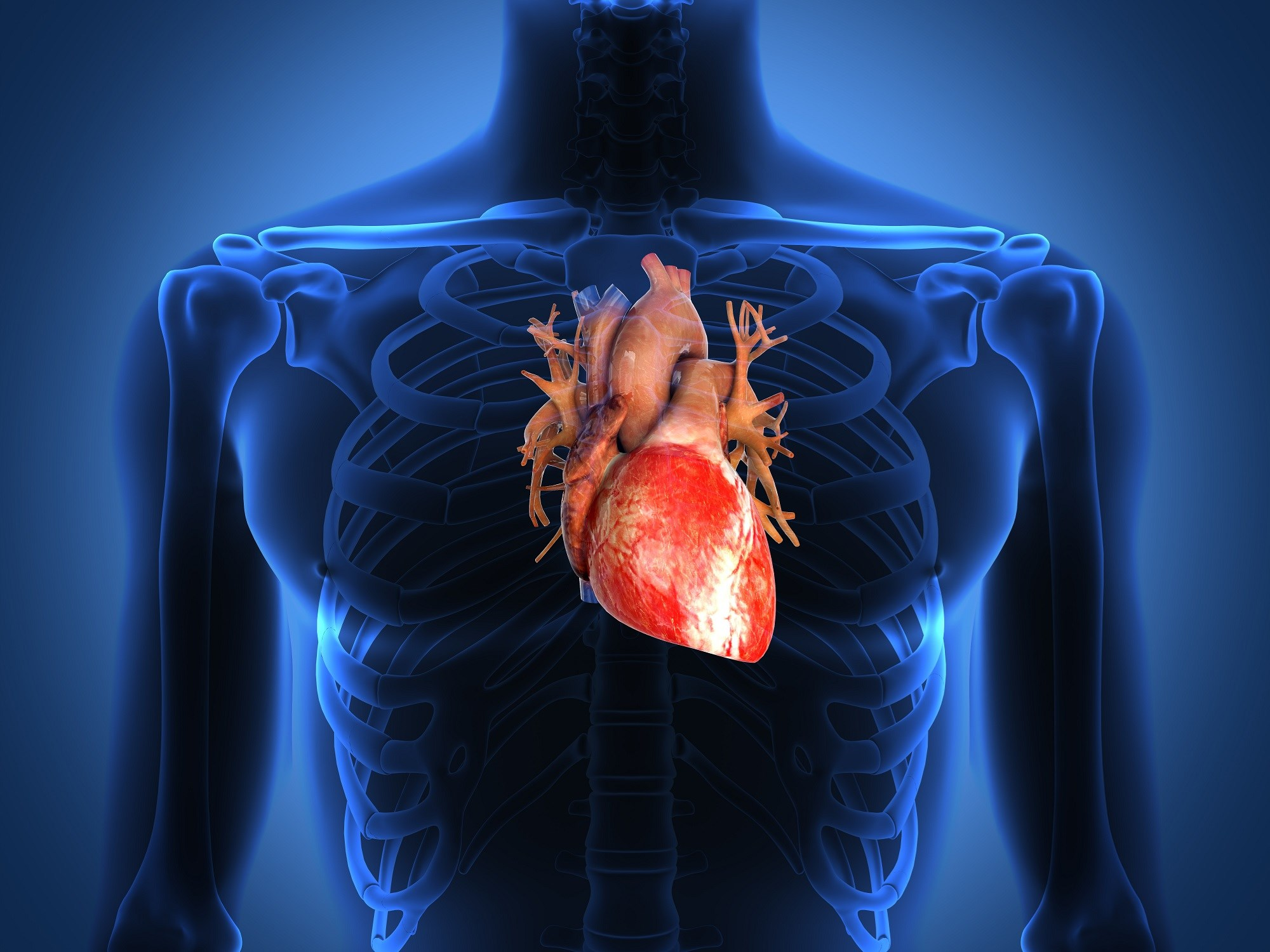 Exercise, TNFi Provide Differential Benefits for Cardiovascular Health in Rheumatoid Arthritis