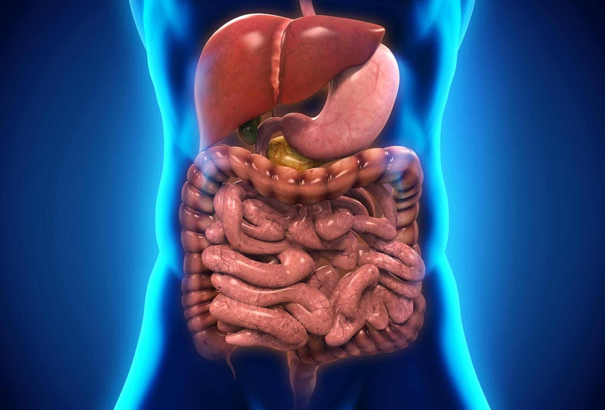 Severe Gastrointestinal Disease in Early Systemic Sclerosis Linked to Increased Morbidity, Mortality